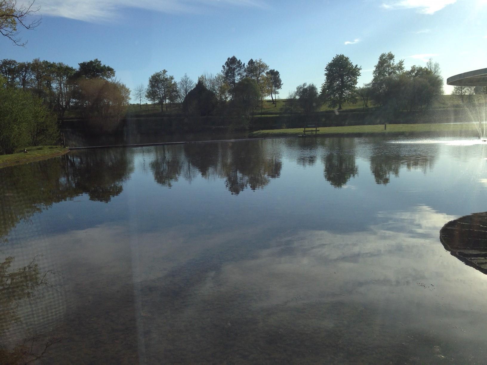 Biodiversité : le rappel nécessaire de l'utilité des zones humides