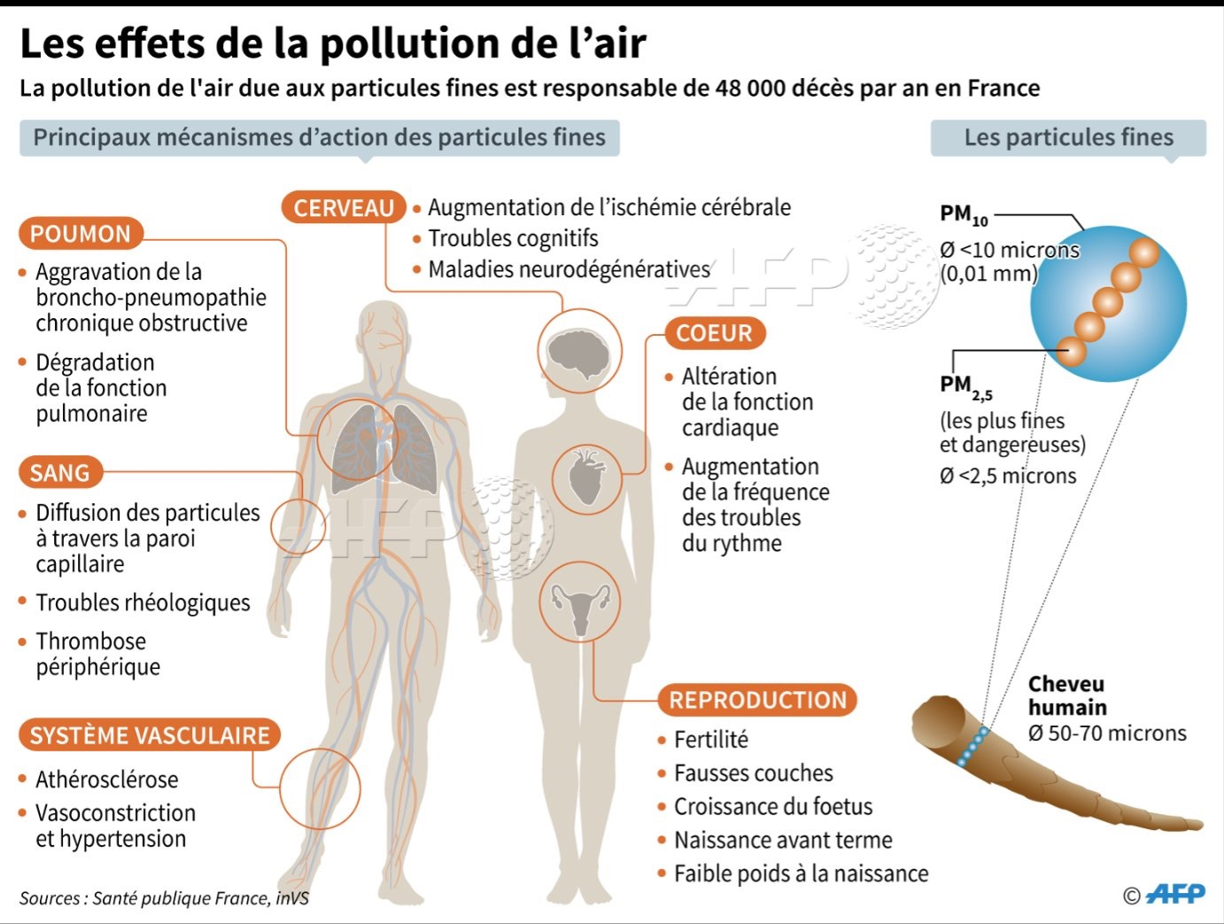 G7 : J – 48 : le défi de la pollution de l'air