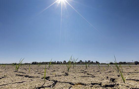 Vie pratique : les tableaux du BRGM alertent sur la sécheresse
