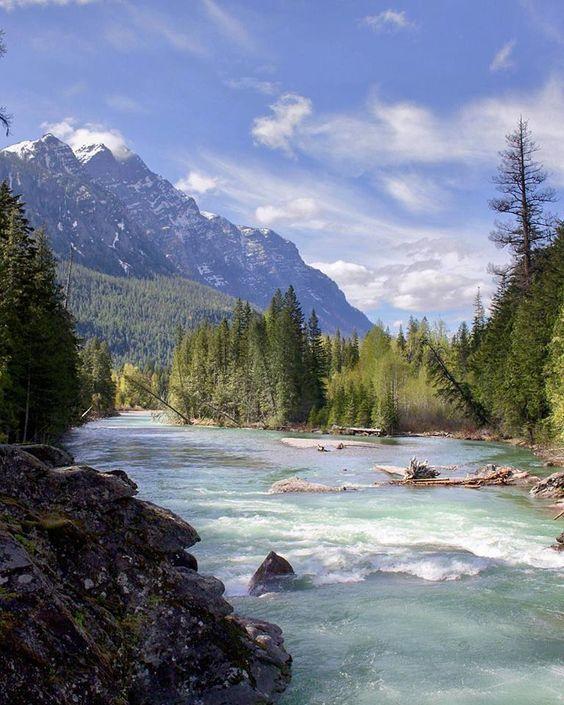 Vie pratique : l'eau et la biodiversité