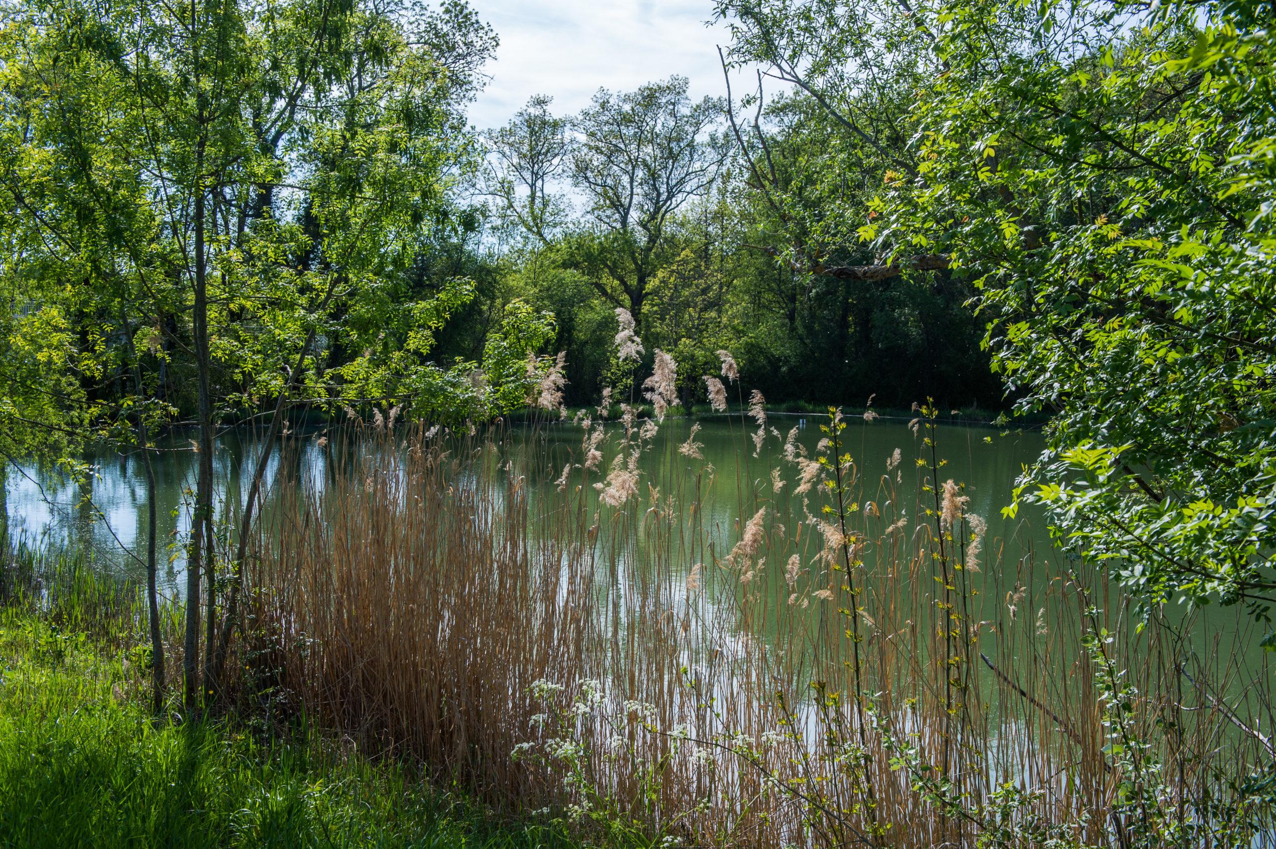 Publication de l'Atlas des espaces protégés en France