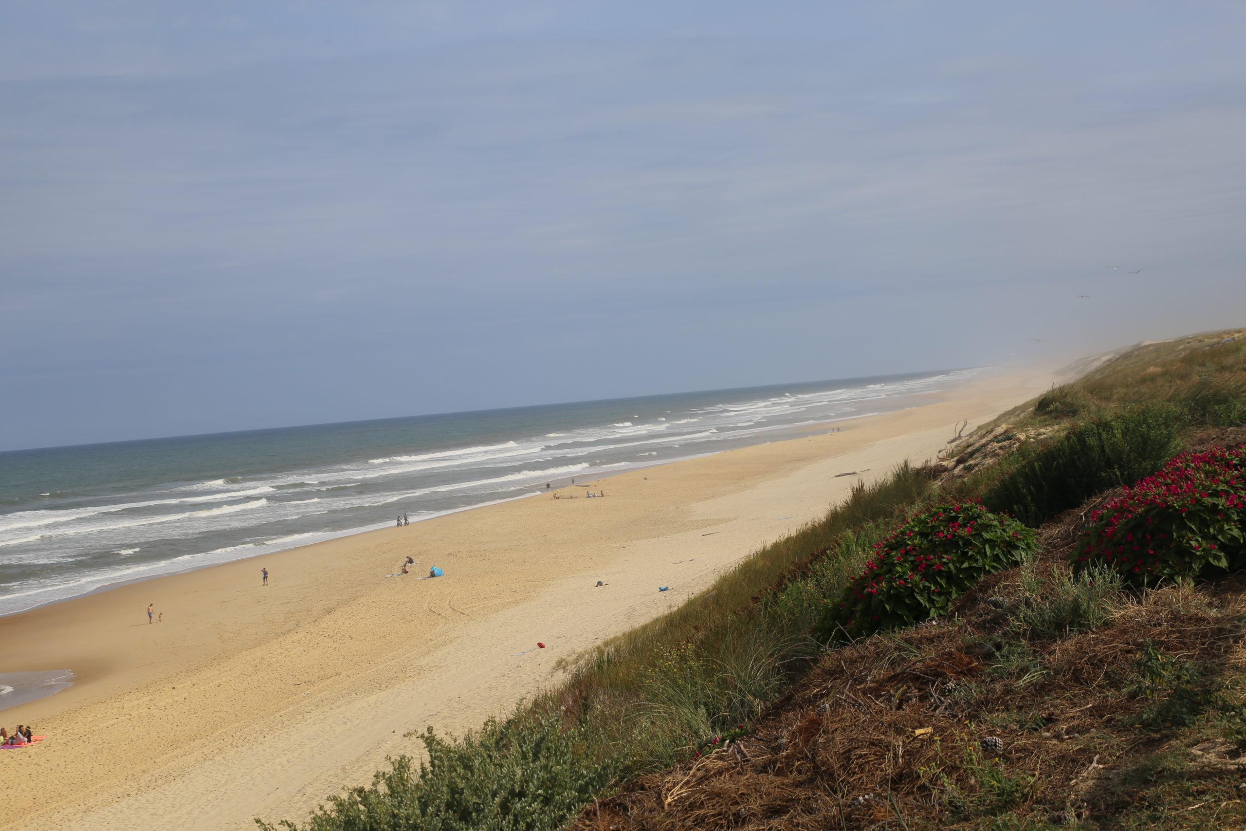 8 juin : journée mondiale des océans